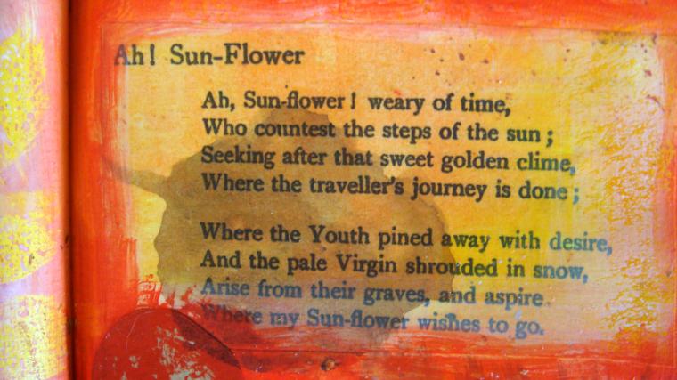 Sunflower Poem