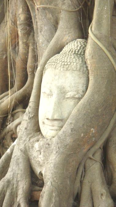 Thailand21