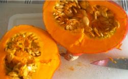 Pumpkin jam 1
