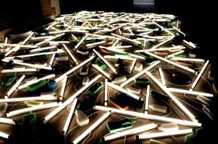 Biennale 12