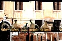 Biennale 13