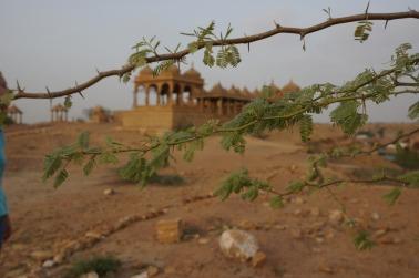 Pushkarna Trust