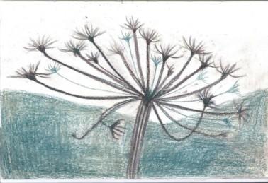 Dried Plant (2)