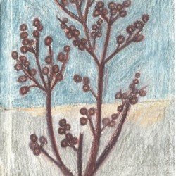Twig (2)