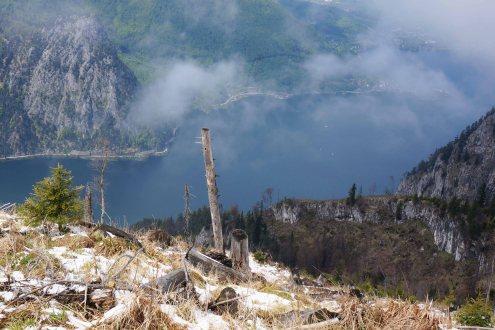Foggy Landscape 2